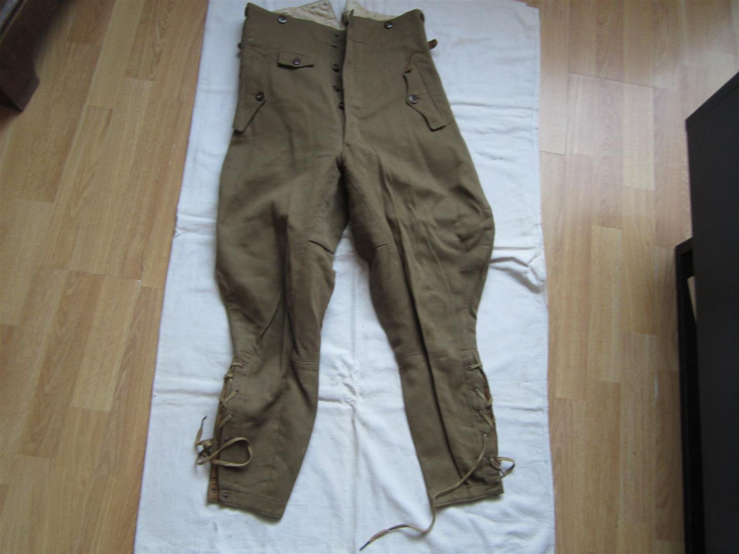 WW2 German NSDAP Breeches